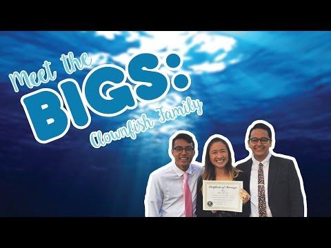 Meet The Bigs: Shark Family
