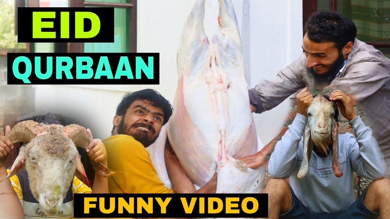 Eid Qurbaan Funny Video By Kashmiri Rounders