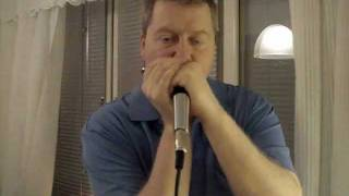 Born in Chicago - Hot Blues Harmonica - Paul Butterfield Cover