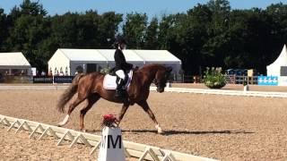 Louise Christensen & Vegelins Goya i kür Ponny-EM 2015