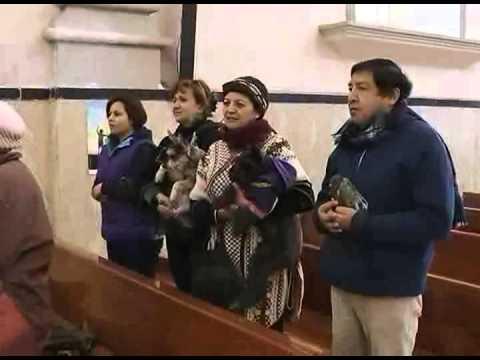 Iglesia de San Esteban realizan misa para bendecir mascotas