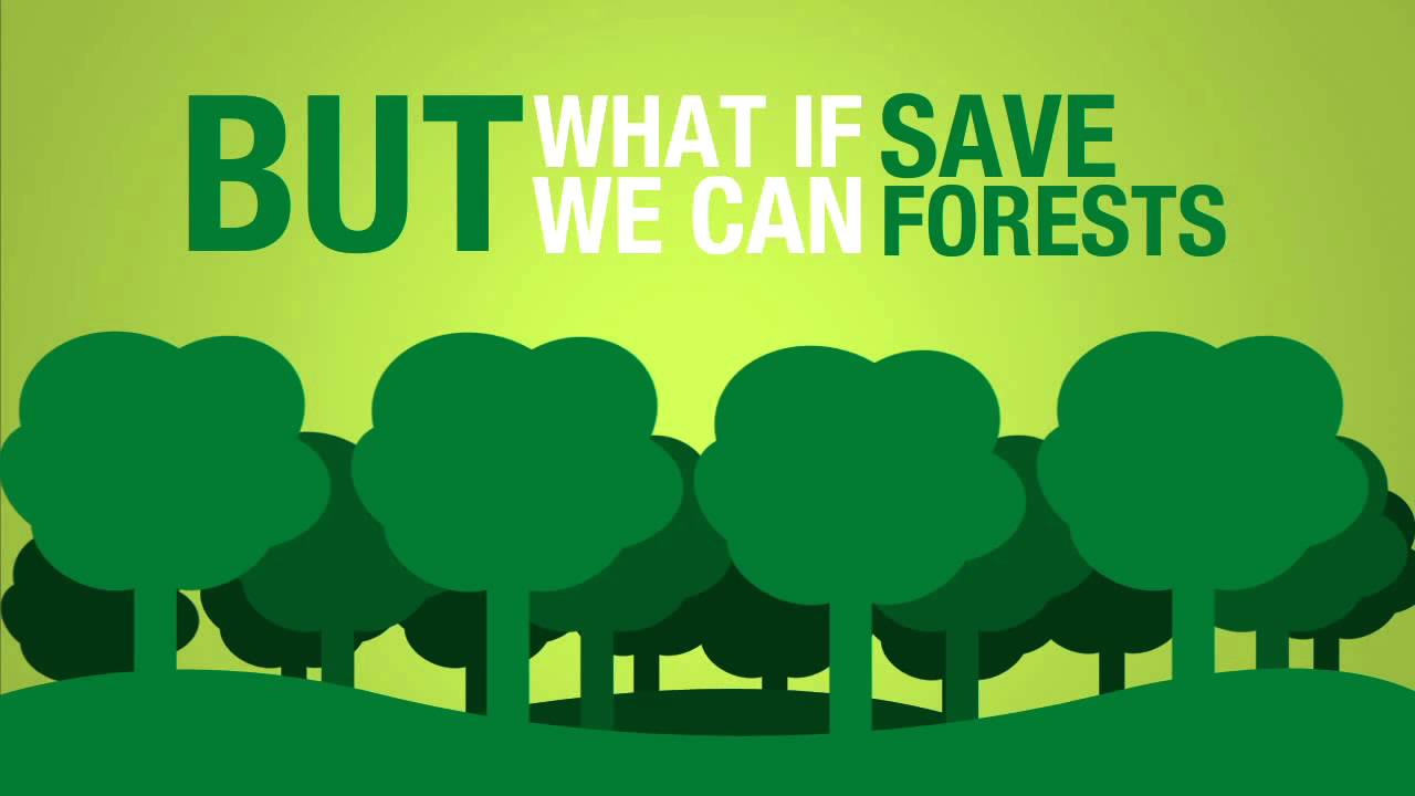 save paper to save forests