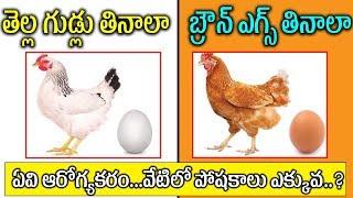 వీటిలో ఈ గుడ్డు తింటే మంచిది ప్రతి ఒక్కరు తెలుసుకోవాలి   Telugu Health Tips   Egg   Egg Benefits
