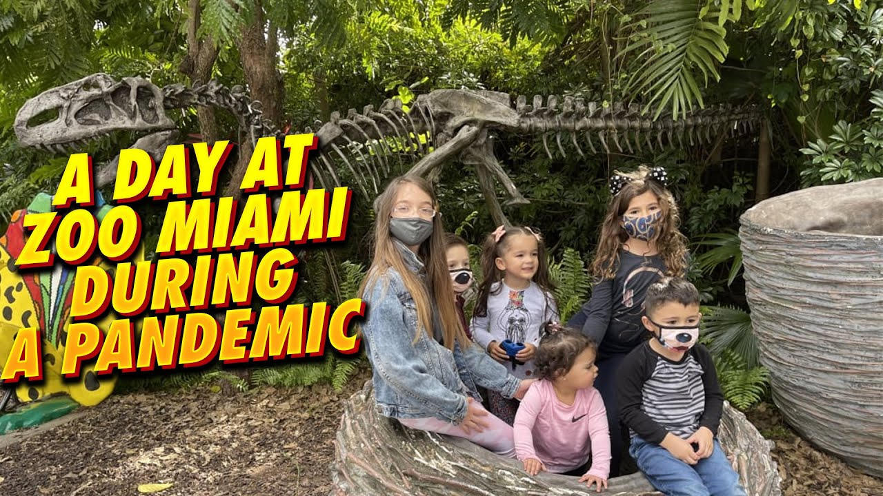 A Day at Zoo Miami During a Pandemic