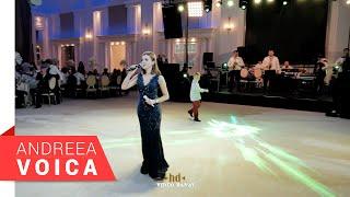 Descarca Andreea Voica - Brau 2020