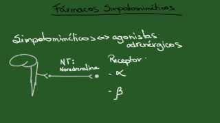 Agonistas Adrenérgicos (Simpatomiméticos) - Resumo - Farmacologia