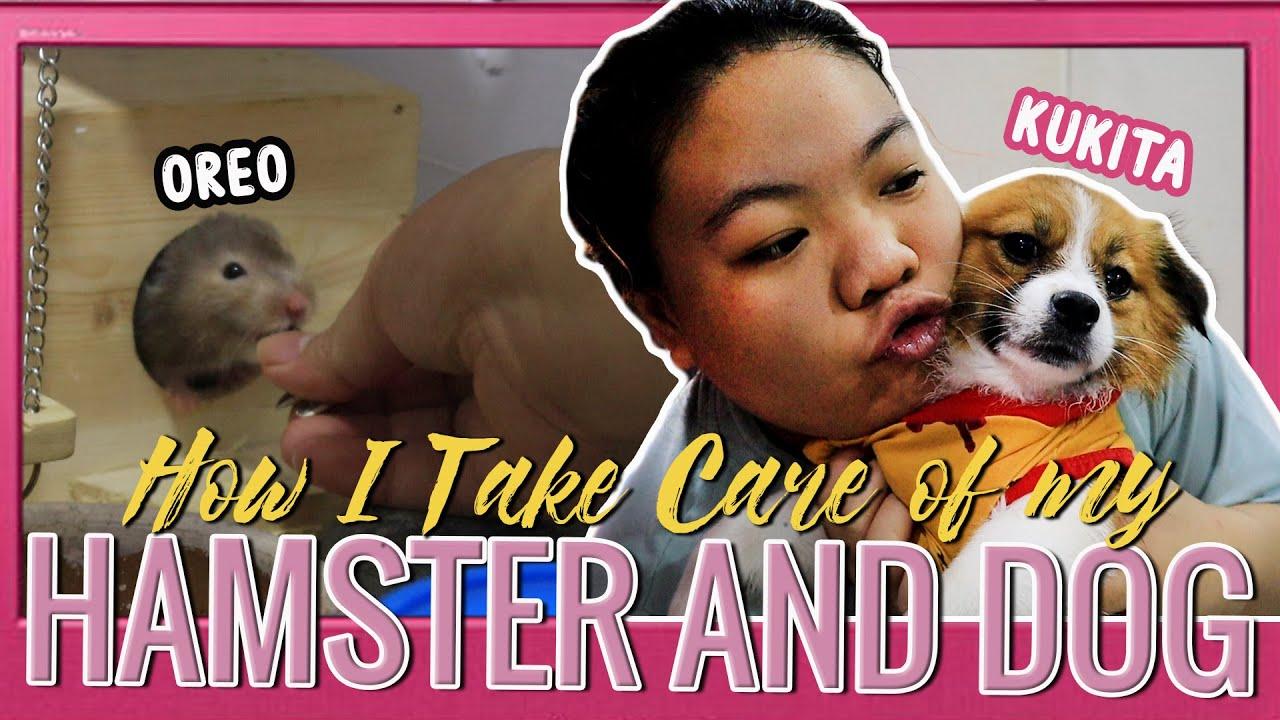 How I Take Care of My Pets sa PAYAMANSION (Kukita the Dog and Oreo Hamster)
