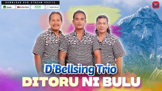 D'BELLSING TRIO - DITORU NI BULU (Official Video) - LAGU BATAK TERBARU