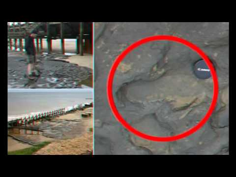 British scientists discover 800,000 year old footprints- 9 February 2014
