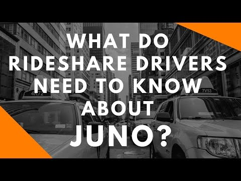 What Do Rideshare Drivers Need To Know About Juno?