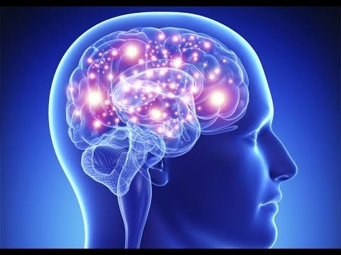 alpha-brain-–-the-nootropic-to-boost-your-memory,-focus-and-clarity