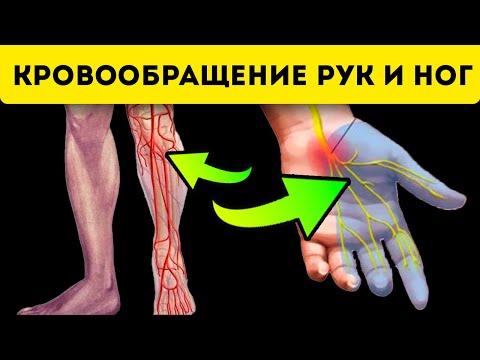 Ноги перестанут мерзнуть, если... Про кровообращение ног и рук!