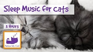 3 Hours of Cat Music to Help your Cats and Kittens Sleep