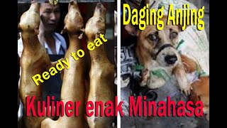 Download Video Dog meat on proces MP3 3GP MP4