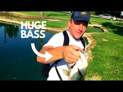 Bakersfield Bass Fishing