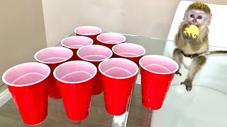 baby-monkey-plays-beer-pong
