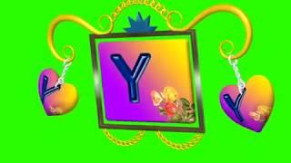 Y Name