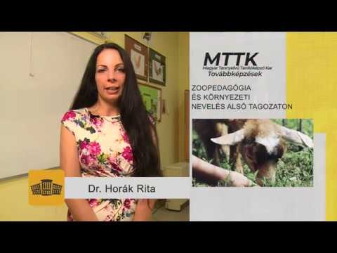 [1041] Zoopedagógia és környezeti nevelés alsó tagozaton