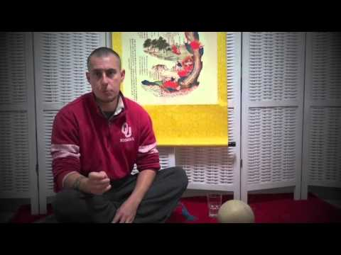 #QigongFestival2016 'Qigong, Problems in Practice and Jing': A discussion with Damo Mitchell