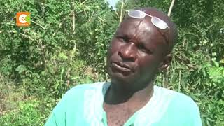 Siaya man turns up after his 'burial'