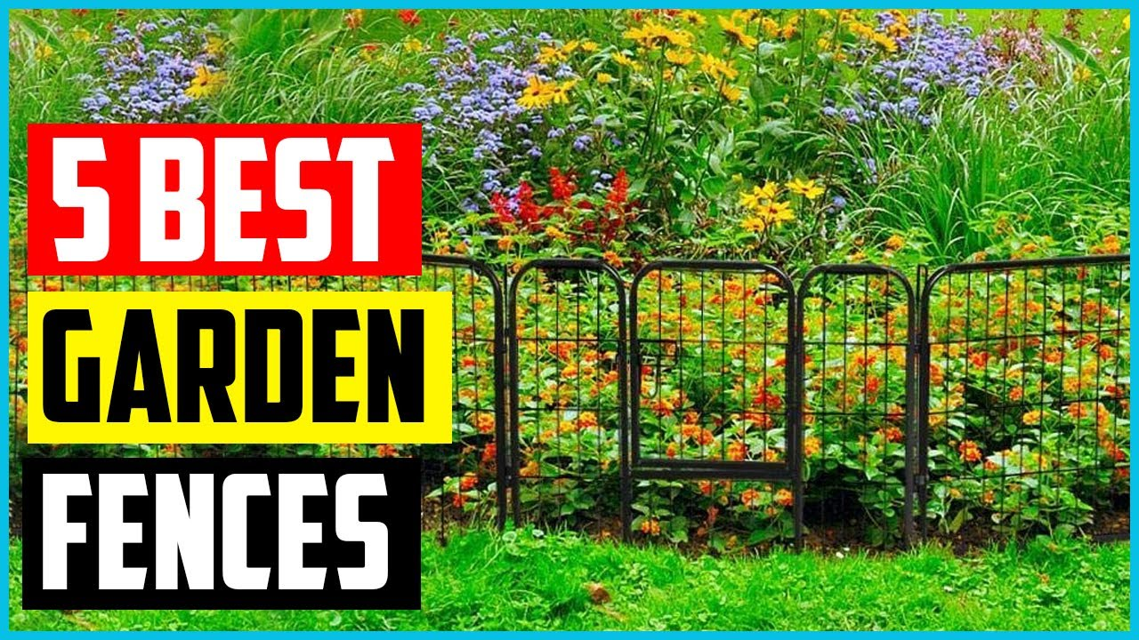 The 5 Best Garden Fences – [2021 Reviews] - YouTube