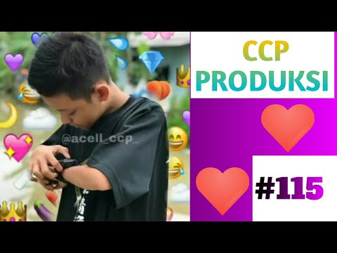 CCP Acell.fr   CCP PRODUKSI   Cute Cut Poto