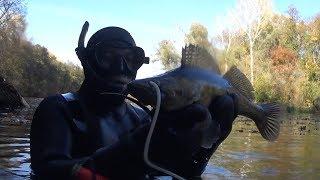 Удачные выходные рыбалка подводная охота