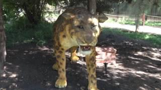 Ульяновцев ждут 14 зверей Ледникового периода