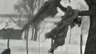 Русская дорога  -  Игорь  Растеряев /клип -  новое  видео 2019