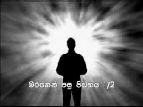 Life after Death 1 of 2 by Siri Samanthabhadra (Pitiduwe Siridhamma) Thero