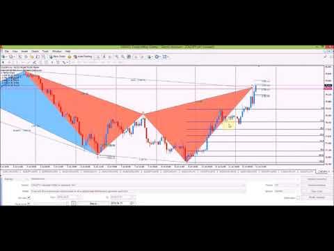pz harmonic trading torrent