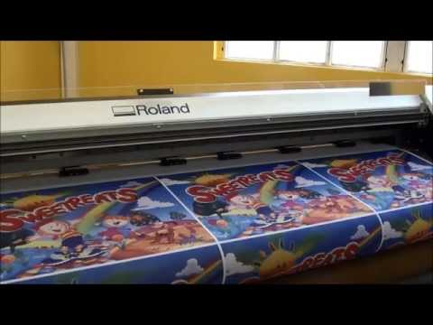 Digital textile Printing, ATPColor Roland based Printer