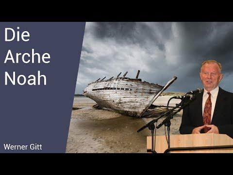 Die Arche Noah – optimal konstruiert?