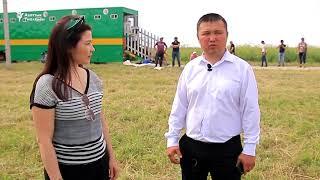 Көкбөрүчүлөр Орусияда өнөрүн көрсөттү