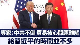 美中恢復貿易談判 專家:中共無誠意將隨時面臨新關稅|新唐人亞太電視|20190702