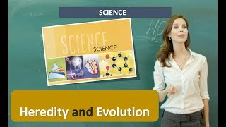 Heredity and Evolution SCIENCE