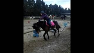 Les animaux de la ferme(4)