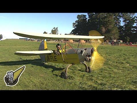 The Flying Flea - Mignet H.M 16/G aircraft