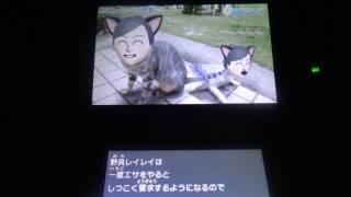 バーコンマスターのトモコレ No.184 今回は『Miiニュース』! こぶしフ...