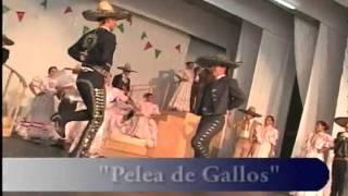 MEXICAN HAT DANCE  Pelea de Gallos.avi