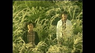 Kiroroの2ndシングル「未来へ」のミュージックビデオ。1998年リリース。...