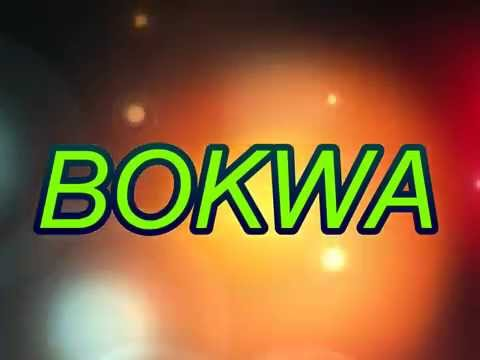 DETROIT MICHIGAN BOKWA BEAT September 19, 2015