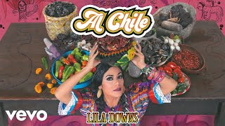Lila Downs - Clandestino (Cover Audio)
