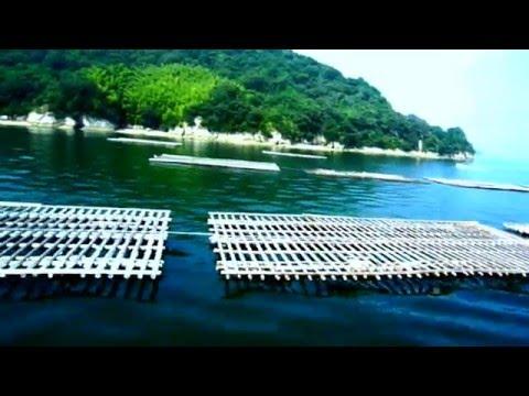 The Seto Inland Sea: A spot of Japan