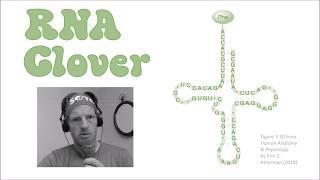 RNA Clover (biology music video based on