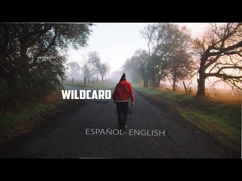 Mickey Valen - Wildcard (feat. Feli Ferraro) Lyrics/Letra
