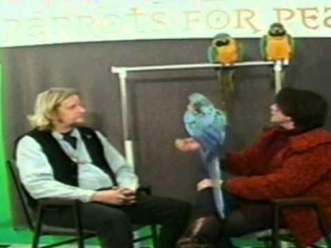 Parrots for Peace Interview