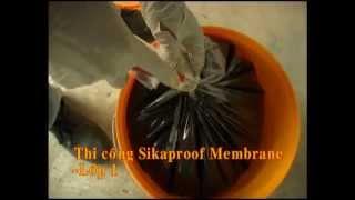 Thi công chống thấm sàn mái Bê tông Sikaproof Membrane + Sika Latex