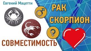 видео Совместимость гороскопов Рак и Скорпион