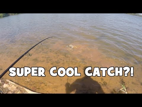 How To Anchor Your Catfish Boat The Right Way [No Sway] from YouTube · High Definition · Duration:  4 minutes 59 seconds  · 24,000+ views · uploaded on 1/20/2016 · uploaded by Catfish Edge